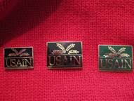 The pin was originally given to attendees of the first USAIN conference in 1990 at the University of Illinois at Urbana-Champaign